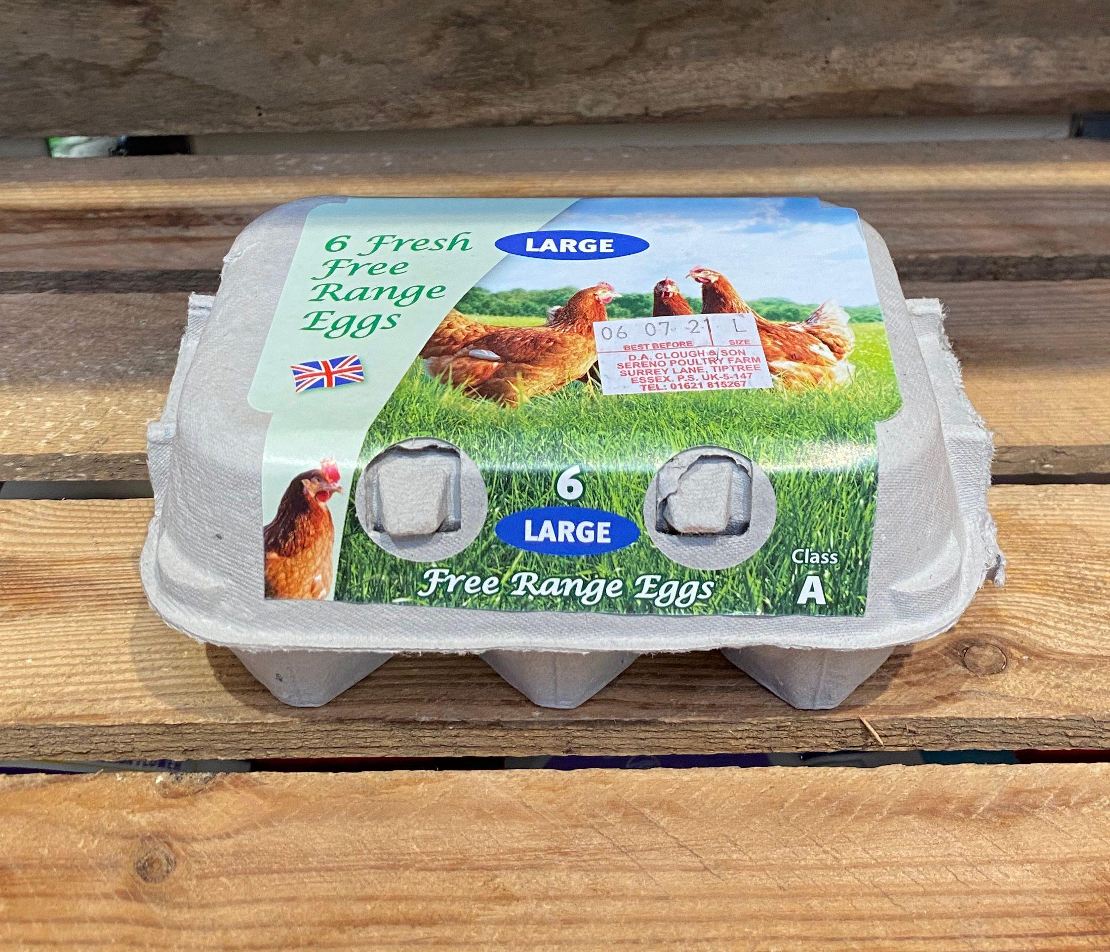 Free range large eggs